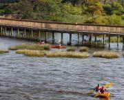 Kayaking - Duck Town Park